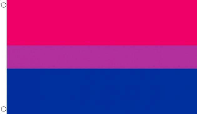 bi pride flag 90x150 printed qx shop